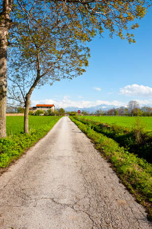The Road to the Farmhouse in Piedmont on the Background of Snow-capped Alps photo