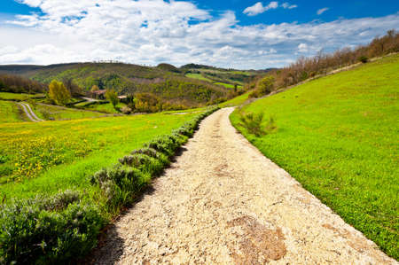 dirt road: Dirt Road Leading to the Farmhouse in Tuscany, Italy