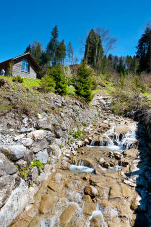 Mountain Stream in the Swiss Alps photo