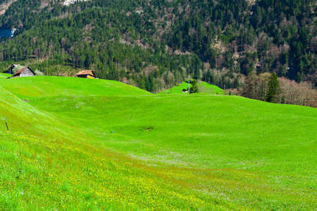 The Small Village High Up in the Swiss Alps photo