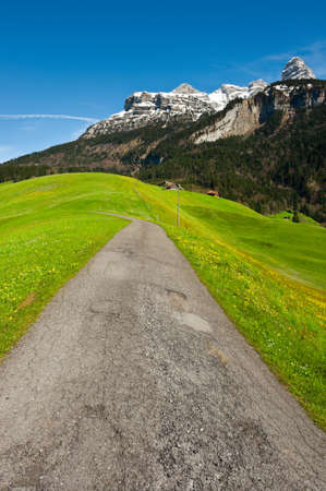 Asphalt Road Leading to the Farmhouse in the Swiss Alps Stock Photo - 14598696