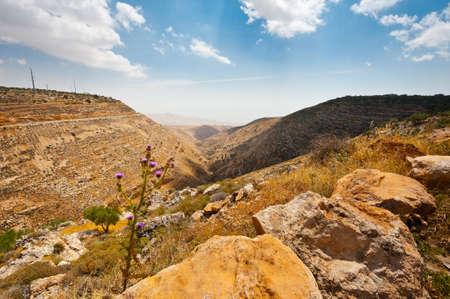 harsh: Harsh Mountainous Terrain in the West Bank, Israel