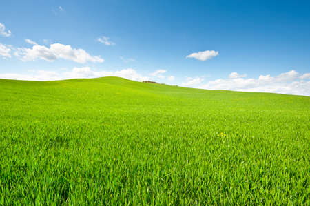 Green Sloping Meadows of Tuscany photo