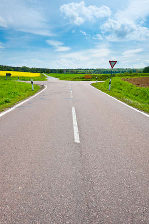 Asphalt Road between Fields of Lucerne in Germany photo