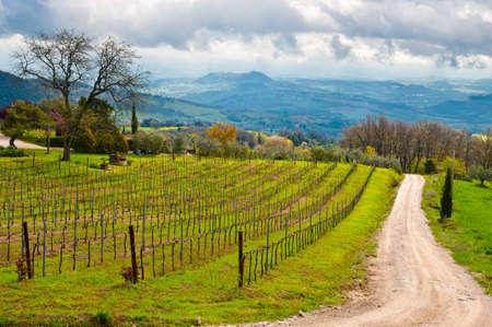 Dirt strada che conduce al Agriturismo in Umbria, Italia Archivio Fotografico