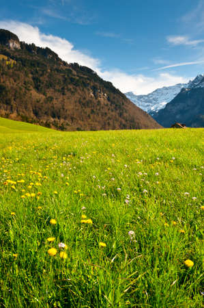 Green Pastures around Farm House in Switzerland photo