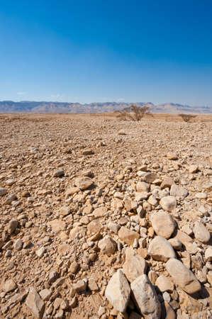 Big Stones in Sand Hills of Samaria, Israel Stock Photo - 15541040