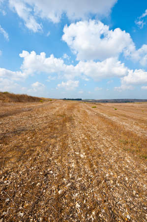 Poor Stony Soil after the Harvest in Israel Stock Photo - 15933983