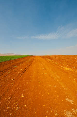 Dirt Road between Plowed Fields in Israel, Spring Stock Photo - 15933991