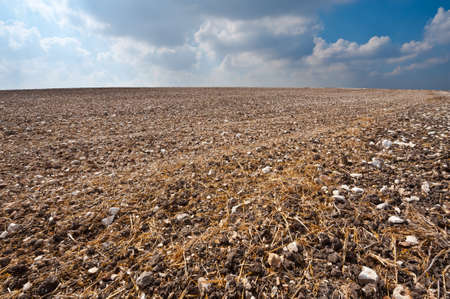 Poor Stony Soil after the Harvest in Israel Stock Photo - 15933998
