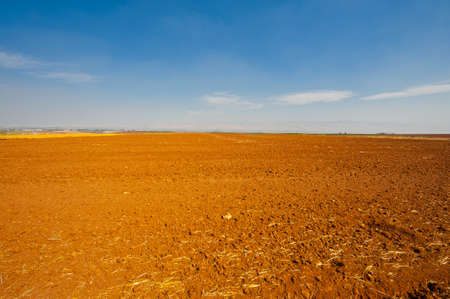 Poor Stony Soil after the Harvest in Israel Stock Photo - 15933994