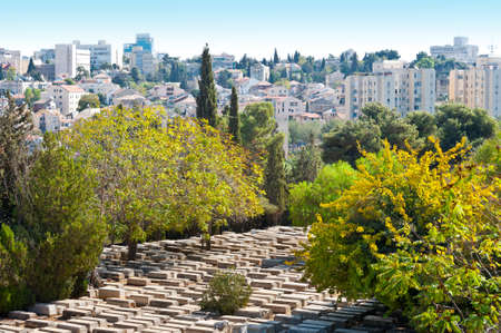 Ancient Jewish Cemetery in Jerusalem among the Trees Stock Photo - 16002135