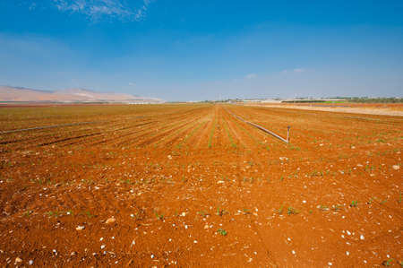 furrow: Sprinkler Irrigation on a Plowed Field in Israel Stock Photo