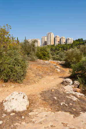 View to Jerusalem from the Olive Grove in the Valley of the Cross Stock Photo - 16002668