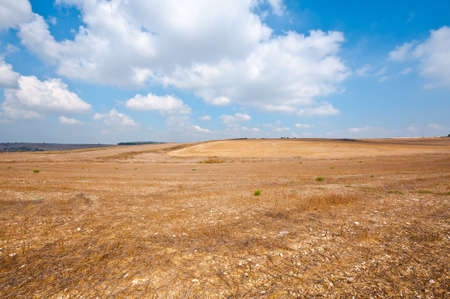Poor Stony Soil after the Harvest in Israel Stock Photo - 16002259