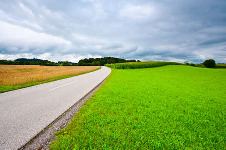 Asphalt Road between Corn and Wheat Fields in Bavaria, Germany photo
