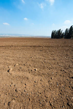 Poor Stony Soil after the Harvest in Israel Stock Photo - 16002459