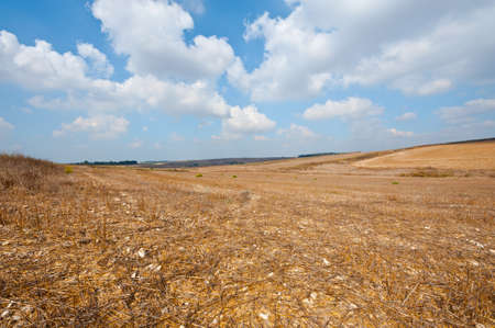 Poor Stony Soil after the Harvest in Israel Stock Photo - 16303204