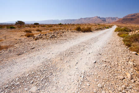 vadi: Dirt Road in the Judean Desert on the West Bank of the Jordan River Stock Photo