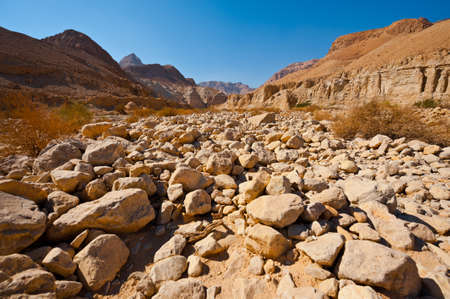 Canyon in the Judean Desert on the West Bank of the Jordan River Stock Photo - 16401623