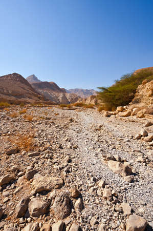 Canyon in the Judean Desert on the West Bank of the Jordan River Stock Photo - 16401426