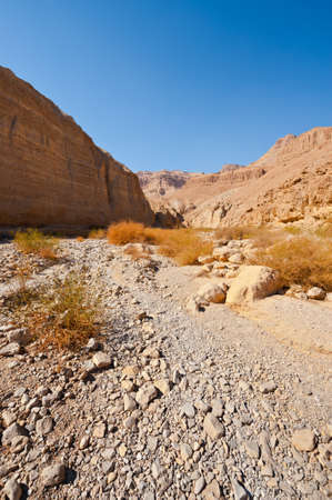Canyon in the Judean Desert on the West Bank of the Jordan River Stock Photo - 16401638