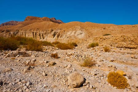 Desert on the West Bank of the Jordan River Stock Photo - 16401746