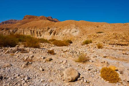 Desert on the West Bank of the Jordan River Stock Photo - 16401746