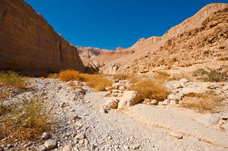 Canyon in the Judean Desert on the West Bank of the Jordan River Stock Photo - 16401749