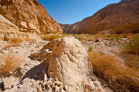 Canyon in the Judean Desert on the West Bank of the Jordan River Stock Photo - 16401754