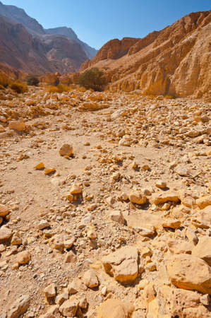 Canyon in the Judean Desert on the West Bank of the Jordan River Stock Photo - 16401753