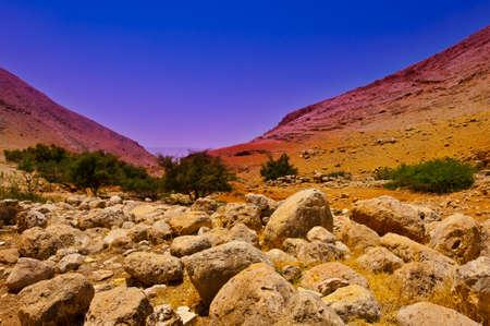 Stone Hills of Samaria, Israel. Sunrise