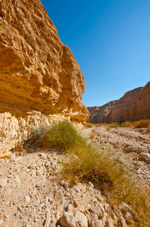 Canyon in the Judean Desert on the West Bank of the Jordan River Stock Photo - 16401744