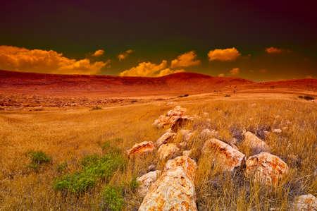 holy land: Stone Hills of Samaria, Israel. Sunrise