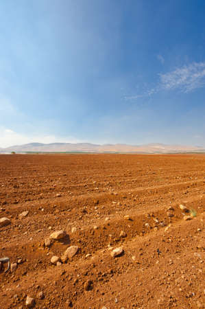 Poor Stony Soil after the Harvest in Israel Stock Photo - 16401431