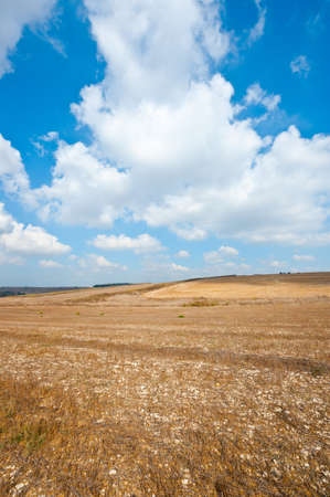 Poor Stony Soil after the Harvest in Israel Stock Photo - 16401419