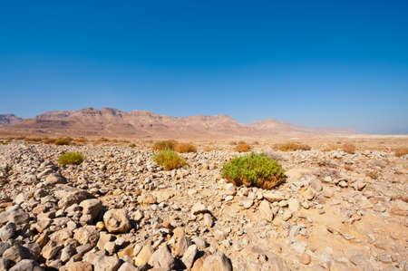Judean Desert on the West Bank of the Jordan River Stock Photo - 16401305