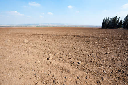 Poor Plowed Soil after the Harvest in Israel Stock Photo - 16401741