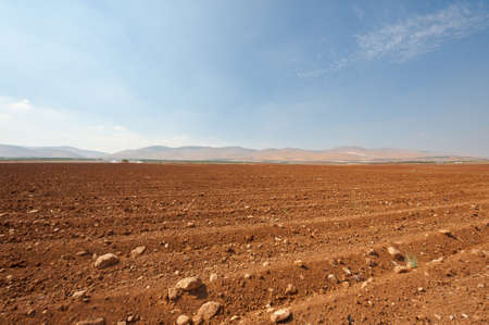 Poor Stony Soil after the Harvest in Israel Stock Photo - 16493255