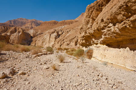 judean hills: Canyon in the Judean Desert on the West Bank of the Jordan River