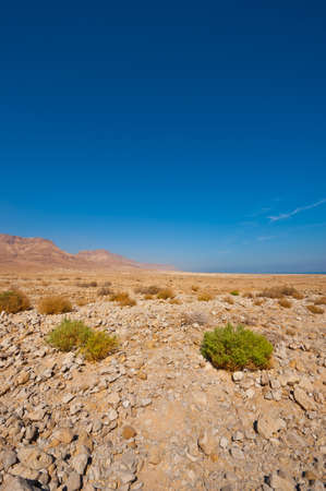View to the Dead Sea from the Judean Desert photo