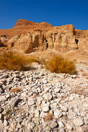 Canyon in the Judean Desert Stock Photo - 16508468