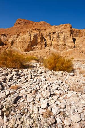 judean: Canyon in the Judean Desert  Stock Photo