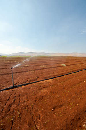 Sprinkler Irrigation on a Plowed Field in Israel Stock Photo - 16508440