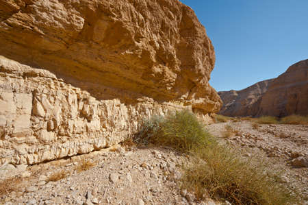 Canyon in the Judean Desert on the West Bank of the Jordan River Stock Photo - 16508465