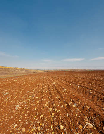 Poor Stony Soil after the Harvest in Israel Stock Photo - 16548641