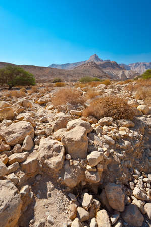 Dry Riverbed in the Judean Desert Stock Photo - 16548642