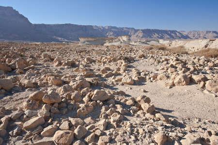vadi: Stone Desert on the West Bank of the Jordan River