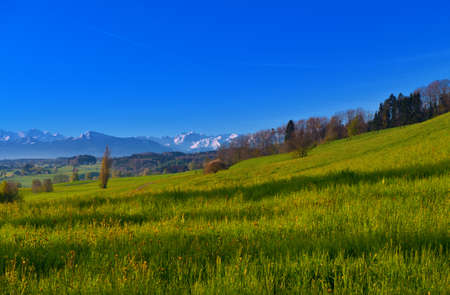 Small Swiss Town Surrounded by Meadows on the Background of Snow-capped Alps photo