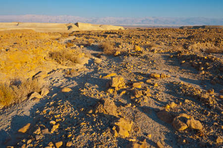 Stone Desert on the West Bank  photo